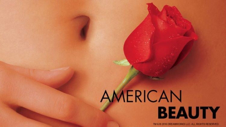 The Philosophy Of American Beauty The Human Front
