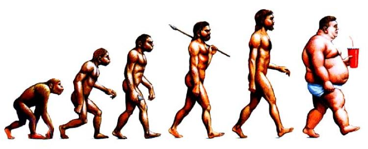 A cynical representation of homo sapien sapien evolution